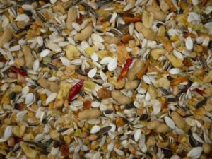 Mixed Bird Seed (Parrot Fruit Food)