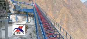 Belt Conveyors/Conveyor Systems/Material Handling Systems pictures & photos