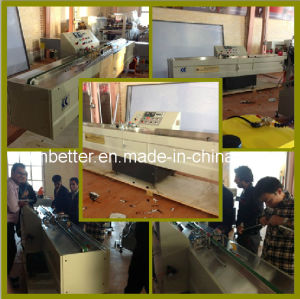 (JT01) Double Glass Machine/Insulating Glass Machine/Double Glass Butyl Glue Coating Machine/Double Glass Butyl Extruder Machinery pictures & photos