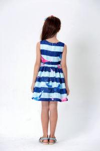 Little Girl Lovely Dress Cute Skirt Mf16266