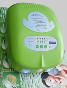 Multi-Purpose Ozone Generator Water Purifier (SY-W100D) pictures & photos