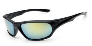 Designer Promotion Plastic Men Sport Sunglasses with Ce Approved (1602)