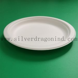 Unicolor Sugarcane Pulp Disposable Paper Tray (Food Grade) pictures & photos