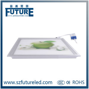 Ultra Slim LED Panel Light with High Quality&Better Price pictures & photos
