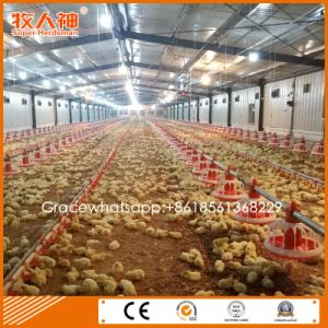 Modern Turn-Key Poultry Farm Construction with Equipment &Prefab Poultry Shed pictures & photos
