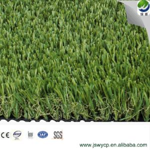 4 Tone Synthetic Artificial Turf for Leisure View Wy-10 pictures & photos