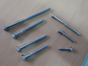 DIN571 Hex Head Wood Screw pictures & photos