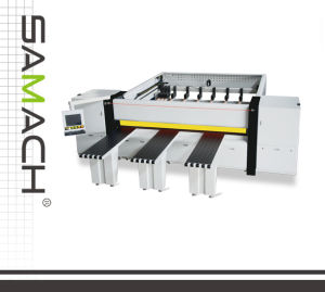 High-Quality CNC Panel Saw (RCJ2700A/3200A/3800A) pictures & photos