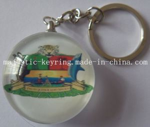 Plastic Keychain with Customized Photo Done Logo (Hz 1001 K036) pictures & photos