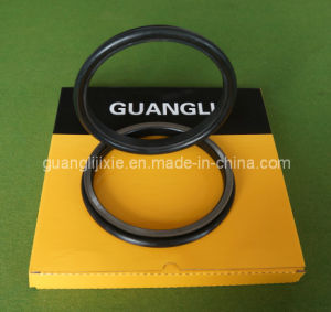Floating Oil Seal Group 4513173 pictures & photos