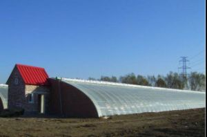 Factory Price Best PE Film Solar Greenhouse for Sale pictures & photos