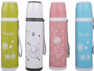 Classic Design Stainless Steel Vacuum Bullet Sport Flask Dn-238 pictures & photos