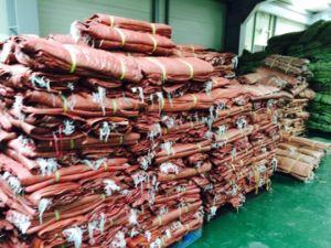 65*80cm 62g Korea Orange Color PP Woven Bag pictures & photos