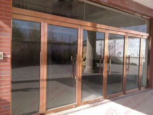 Stainless Steel Entry Door for Commercial Use (BHS-DC10) pictures & photos