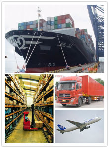 Consolidate a-Class Logistics Service From China to Germany pictures & photos