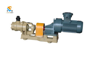 Nyp2.3 Internal Gear Pump for Glues pictures & photos