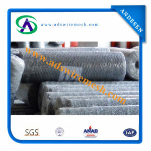 16ga. X1′′ Galvanized Chicken Wire Mesh Chicken Wire (Export to America) pictures & photos