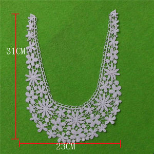 Small Fllower Siwss Cotton Lace Collar (cn98) pictures & photos