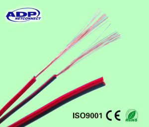 Twin Speaker Cable, Parallel Speaker Cable, Acoustic Cable, Transparent/Red&Black Speaker Cable pictures & photos