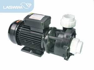 Black Color Swimming Pool SPA Pump-Wp Series pictures & photos