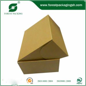 Hot Sell Corrugated Carton (FP11046) pictures & photos