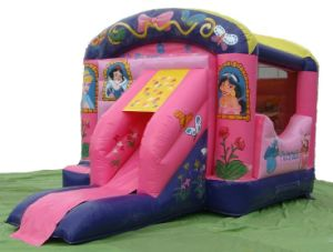 Princess Commercial Inflatable Jumping Castle Slide (JW0512-1) pictures & photos