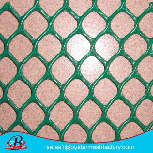 Plastic Flat Mesh, HDPE Plastic Mesh, Plastic Netting, Hex Plastic Mesh pictures & photos