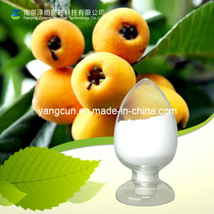 Natural Plant Extract 98% Ursolic Acid pictures & photos