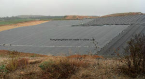 PVC Geomembranes High Quality for Landfill pictures & photos