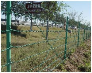 Green Color High Quality Barbed Wire Fence pictures & photos