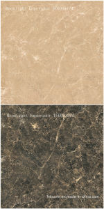 Porcelain Marble Flooring Ceramic Floor Tile for Interior Decoration TF60031PA 600X600mm