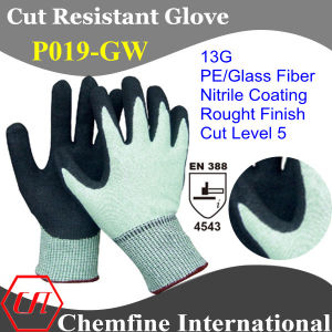 13G Green PE/Glass Fiber Knitted Glove with Nitrile Rough Coated Palm/ En388: 4543 pictures & photos
