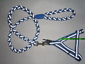 High Quality Collars Pet Leashes pictures & photos