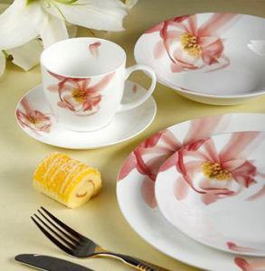 22 Pieces Porcelain Western Dinner Set (LFR6437) pictures & photos
