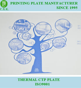 CTP Printing Plate (P8) pictures & photos
