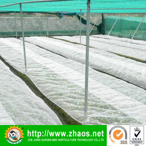 Anti Hail Net for Agriculture Agriculture Net Anti-Hail Net pictures & photos
