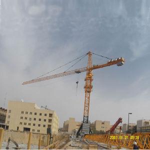 Qtz250 Tower Crane pictures & photos