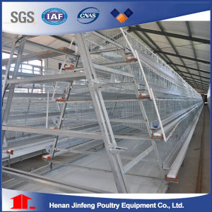 4 Tiers Hot Galvanized Automatic Layer Poultry Cage pictures & photos