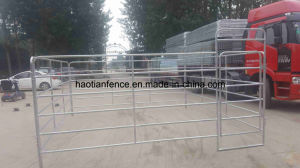 Heavy Duty Horse Corral Panels Metal Horse Fence Panel pictures & photos