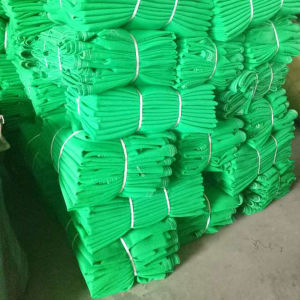 HDPE Flame Retardant Scaffold Safety Net pictures & photos