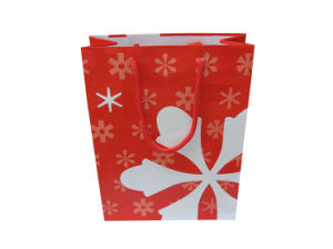 2017 Hot Sale High Quality Paper Shopping Gift Bags for Cosmetics (FLP-8914) pictures & photos