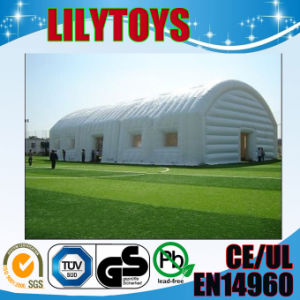 giant inflatable lawn tent for wedding or advertising events(Lisa-5) pictures & photos