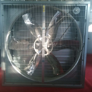 Exhaust Fan with CE Certification for Greenhouse and Poultryhouse pictures & photos