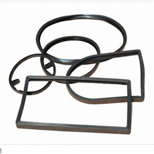 Custom Rubber Gasket pictures & photos