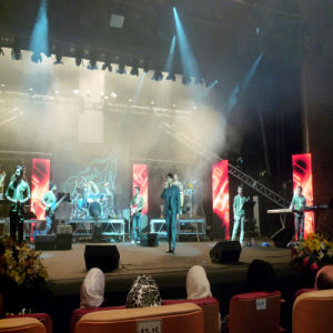 Rental LED Curtain Screen/Stage LED TV pictures & photos