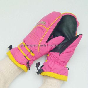 Ski Gloves (ZSSG-0013)