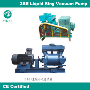 Water Ring Vacuum Pump 2be pictures & photos