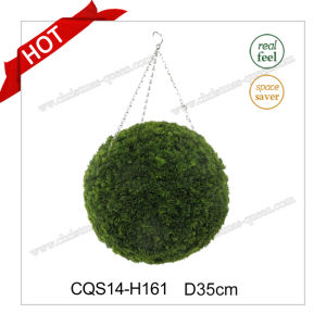D35cm Party Supplies Boxwood Natural Leaves Wedding Decoration Craft pictures & photos