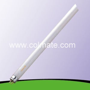 4W-80W T5 Triphosphor Fluorescent Tube / Fluorescent Lamp pictures & photos