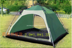 Outdoor Strong Auto Camping Tent pictures & photos